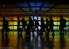 Go With The Flow (Greg Adams Photography) Tags: silhouettes silhouette people walking airport terminal chicago chicagoohare ord united colors colours travellers vacation movement geometry shadows light hhsc2000 2016 many