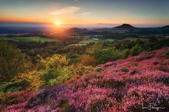 Roseberry Topping overlaid in soft golden light ( Ian Flanagan) Tags: roseberry topping sunset heather golden light sunburst shadow fields green cockshaw yorkshire