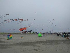 The Long Beach kite festival: windy and totally not 95. (aeshirey) Tags: ifttt potd
