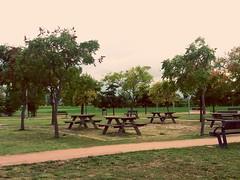 Parco giochi (faithiscrazy_) Tags: park parco garden gardenpark playground rivercourt oth onetreehill