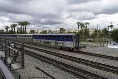Amtrak Pacific Surfliner (ExactoCreation) Tags: surfliner amtrak superliner