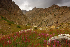 Namla: Shinlep Bluk (Shahid Durrani) Tags: biafo glacier karakorams gilgit baltistan pakistan
