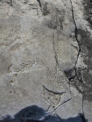 Ancient Stone Carving (illetyus / Instagram @illetyus09) Tags: ancient city priene carving weird ske aydn atakan alpaknc illetyus illetyus09