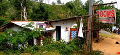DSCN3788 (che1899) Tags: srilanka ella