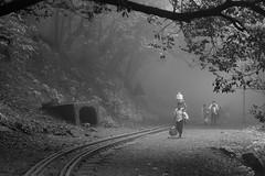 Matheran-5553 (Satish Chelluri) Tags: satishchelluri satishchelluriphotography matheran maharastra hillstation fog train