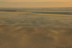 Belgian coast (Natali Antonovich) Tags: belgiancoast wenduine northsea sea mysticalatmosphere mystery mysteri parallels nature sand water horizon landscape seashore belgium belgie belgique