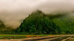 Mist is a gift (Marie.L.Manzor) Tags: mist clouds nature landscape rain mountain trees green 2016 nikon nikkor nikon610 marielmanzor 1000favs 1000favorites