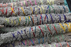 Macro photograph of bundles of sage, Farmers Market, Santa Fe, New Mexico (cocoi_m) Tags: macrophotograph tied staked bundle sage farmersmarket santafe newmexico colorful food