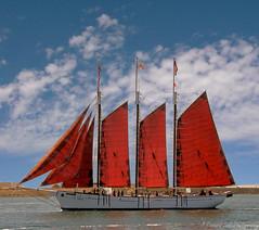 American Pride (J_Richard_Link) Tags: americanpride tallship san diego sail ship