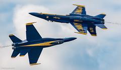 Blue Angels (NeilCastle) Tags: navy airshow virginia blueangels displayteam 2016 fa18hornet nasoceanaairshow virginiabeach