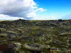 Eldhraun lava field, Iceland (Kat.Flanagan) Tags: eldhraun lava lavafield iceland europe islandia bluesky clouds cloudscape rocks moss grass greenery iphone iphonography travel traveling discover explore exploring honeymoon passport