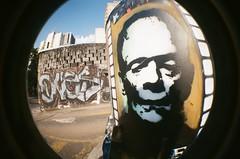 #342 ([ iany trisuzzi ]) Tags: streetart film analog 35mm lomography toycamera fisheye fisheye2 project365 365days