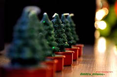 waiting for your fire (dimitra_milaiou) Tags: life christmas xmas friends red tree green love home greek happy fire lights design nice nikon waiting holidays europe poetry candles december colours you bokeh many d small joy hellas lifestyle style happiness athens row greece thoughts wait imagine imagination 90 dimitra d90 waitfor          milaiou