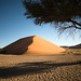 "Dunes in Sossusvlei Namibia • <a style=""font-size:0.8em;"" href=""https://www.flickr.com/photos/21540187@N07/8292734332/"" target=""_blank"">View on Flickr</a>"
