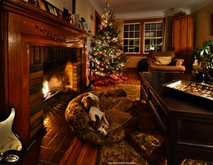 silent night, holy night (Rex Montalban) Tags: christmas dog glass fireplace wine whippet ripley hdr photomatix nikond7000 rexmontalbanphotography