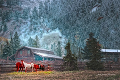 One Fine Day ... (Aspenbreeze) Tags: ranch winter horses snow mountains hoarfrost smoke snowing wyoming thegalaxy aspenbreeze topphotospots tpslandscape gpsetest bevzuerlein