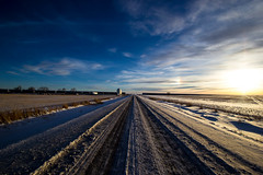 Road at Herronton (begineerphotos) Tags: road gravelroad train traincars graincars sky field country prairie sunset canon alberta herronton 1001nights 1001nightsmagiccity rememberthatmomentlevel1 rememberthatmomentlevel2 rememberthatmomentlevel3 mygearandme vigilantphotographersunite vpu2 vpu3 vpu4 friendlychallenges 15challengeswinner