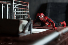 The Amazing Spidey (Clarkent78) Tags: toys spiderman actionfigures spidey marvel diorama marveltoys toyphotography toydiorama clarkent78 jeffquillope toyphotographyaddict