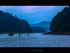 There Are Places On Earth , Where Beauty Hides In a Patient River Or a Lonely Mountain. Once In a Life Time You Pass Through Them And Become Breathless For a Moment....! (Mysmile Photography) Tags: ocean blue trees sunset shadow sea wild sky india mist mountain lake green bird love nature water beautiful animal animals misty forest canon river dark landscape island evening boat asia alone worldaidsday natureza hill kerala mangrove scenary pleasure kochi hillstation thekkady kumily week49 dec12 day262 day316 day333 day336 davebrubeck peermade idukki frohesneuesjahr dia29 periyartigerreserve highrange bestcapturesaoi mygearandme dec2012 flickrsfinestimages1 me2youphotographylevel2 me2youphotographylevel1