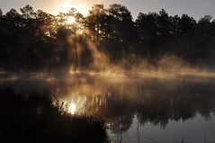 Duck Pond - Eglin Range Complex, Florida (fisherbray) Tags: camping usa mist lake water fog nikon wasser nebel unitedstates florida airforce usaf duckpond eglin eglinafb okaloosacounty d5000 fisherbray eglinrangecomplex