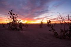 Sunrise on Sahara (Benjamin Gillet) Tags: road canon landscape eos desert m route morocco maroc maghreb 5d desierto hamid paysage marruecos m2 zagora marokko marroc wste deserto marrocos dsert fas magreb mark2 marocaine mhamid maroko   marok    pustinja  maghribi  maroka    marac marokk 5dm2  marip