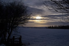 Brechin (Michelle O'Connell Photography) Tags: winter sunset snow scotland angus farm country brechin michelleoconnellphotography