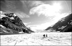 Venturing Up The Columbia Ice Fields (greenthumb_38) Tags: canada reunion rockies canadian alberta 2012 canadianrockies jeffreybass august2012 moseankoreunion