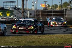 APR-Motorsport-Rolex-24-2013-044