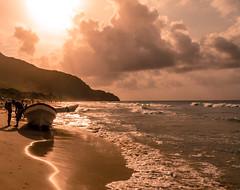 I told you - Te lo dije. (David Ruiz Luna) Tags: sea beach southamerica coast venezuela caribe choroní mfcc puertocolombia americadelsur frameit fabuleuse blinkagain bestofblinkwinners blinksuperstars bestofsuperstars henripittiernationalparc frameitlevel3 frameitlevel2 blink4gallery