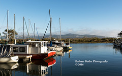 By the Bay (RedHatGal: Barbara Butler/FireCreek Photography) Tags: morrobay ca boats water strand centralcoast beach sand dock clouds evening fishing barbarabutlerphotography firecreekphotography redhatgal
