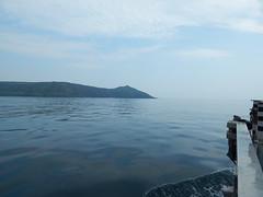 Plymouth-201605-30 (Tony J Gilbert) Tags: plymouth marine macro underwater diving nikond300 handdeeps jameseaganlayne hilseapointrocks scylla ceeking wwwdivingplymouthcom