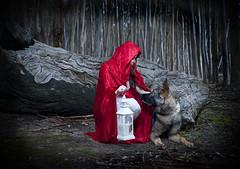 Red Ridinghood meets the wolf (Ineke Struk) Tags: redridinghood woods wolf forest german shepherd
