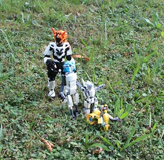 Going for a walk. (Loysnuva) Tags: lego moc ccbs technic system photo trip bionifigs