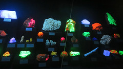 Fluorescent Rock Display (edenpictures) Tags: mineral rocks samples glowinthedark glowing tellussciencemuseum cartersville georgia crystal willemite calcite