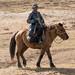 Menino pastor em seu cavalo