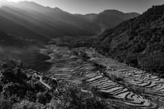 Beautiful view (Chris Hooton) Tags: chrishooton chrishootonphotography chrishootonnewzealand nikon nikond3100