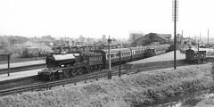 That was Banbury station that was (Garter Blue) Tags: banbury station 1930s steam gwr gcr rail passnger railway cattle black blackandwhite
