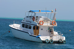 IMG_3014_Hurghada 2016 the best of (Adam Is A D.j.) Tags: wismec vape hurghada egypt red sea mahmya desert rose resorts travel beach sun nature canon 5d mark iii 700d
