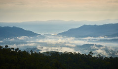 Myanmar 250 (franksteinmann) Tags: myanmar burma asia chin landscape valley clouds morning forest wood