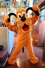 Pluto (sidonald) Tags: tokyo disney tokyodisneysea tds tokyodisneyresort tdr greeting horizonbayrestaurant    pluto