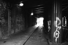 Dublin tunnel (gato-gato-gato) Tags: 35mm asph belfast dublin iso200 ilford ireland lauwersoog leica leicamp leicasummiluxm35mmf14 mp mechanicalperfection messsucher strasse street streetphotographer streetphotography streettogs summilux wetzlar analog analogphotography aspherical believeinfilm black classic film filmisnotdead filmphotography flickr gatogatogato gatogatogatoch homedeveloped manual rangefinder streetphoto streetpic tobiasgaulkech white wwwgatogatogatoch countydublin irland ie leicam6 m6 manualfocus manuellerfokus manualmode schwarz weiss bw blanco negro monochrom monochrome blanc noir strase onthestreets eire ferien holidays urlaub insel island europe europa northernireland uk