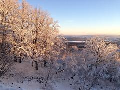 Winter an der Mörschieder Burr (AndreasHerbert) Tags: winter mörschied mörschiederburr