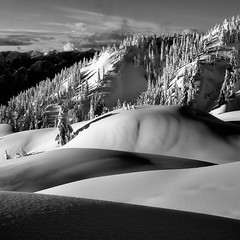 Shadows & Curves (Christopher J. Morley) Tags: bw white mountain snow canada black vancouver square snowshoe nikon shadows bc natural walk curves north hike solo layers seymour curve d600 alw