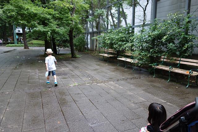 たてもの園 下町夕涼みのメイン会場に向かって歩きます。|たてもの園 下町夕涼み