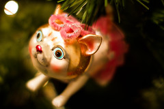 Ballerina cat (*(Ian)* - Ian Howard) Tags: christmas xmas decorations tree animals funny awesome explore haha baubles hohoho decs explored