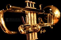 Golden Trumpet 3