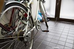 民宿的自行車 Bike / Kyoto, Japan (yameme) Tags: travel japan canon eos kyoto 京都 日本 kansai 旅行 關西 民宿 24105mmlis 5d3 5dmarkiii