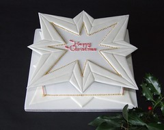 Christmas Cake - Happy New Year (Alix'sCakes - away for a while) Tags: star collar piping christmascake royalicing runout alixscakes