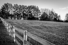 Fence line (Dan:Brown) Tags: bw virginia farm lr4 d7000 limestonefarm