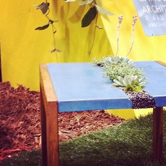 Adorable little patio table with inset live #succulent plants, $450 rom 5 Feet From the Moon. #dwellondesign (Yahoo! Homes) Tags: dod2012 dwellondesign2012